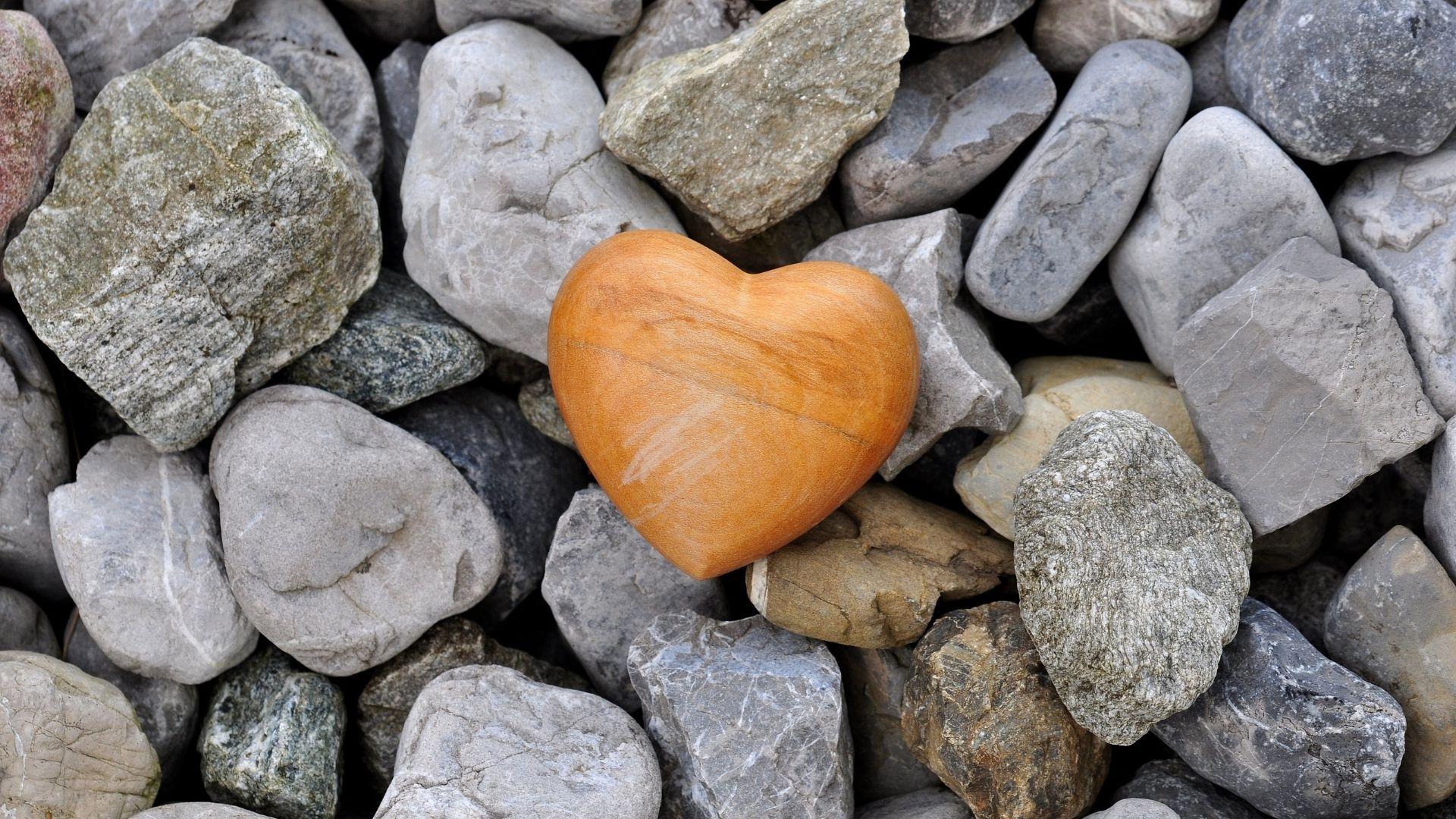 Was wir vom Herzen lernen können